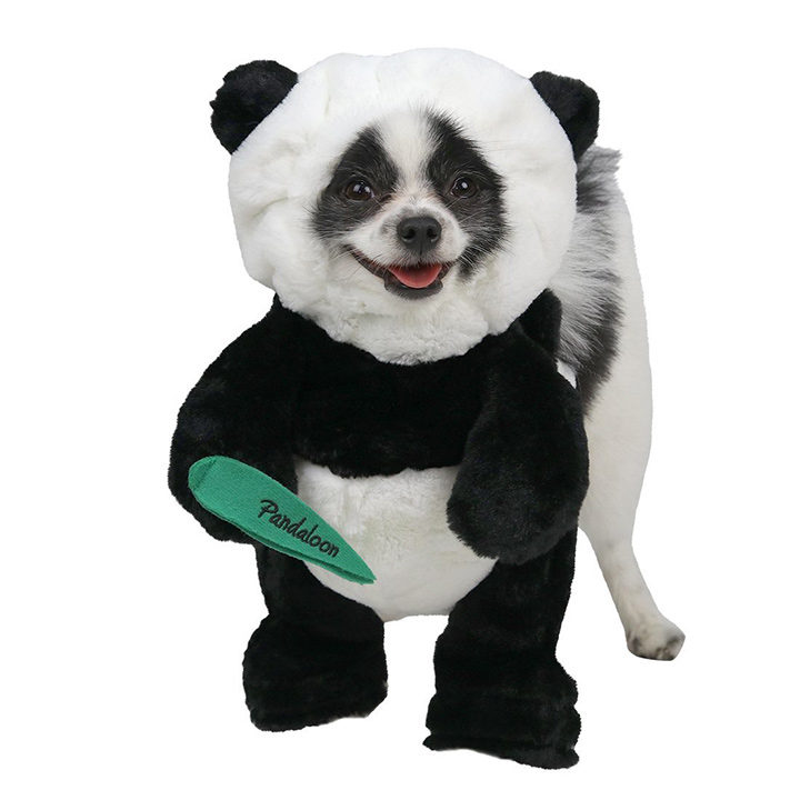 Pandaloon